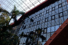 Building Glass Cleaning Services in Mumbai